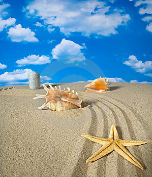 Landscape With Seashell And Stones On Sky Royalty Free Stock Image - Image: 9071046