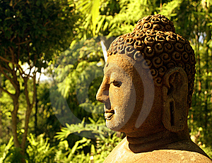 Statua Di Buddha In Foresta Fotografia Stock Libera da Diritti - Immagine: 9071847