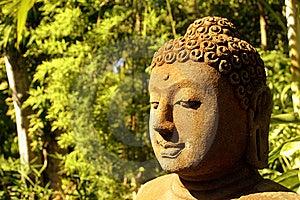 Estátua Da Buda Na Floresta Fotos de Stock - Imagem: 9071863