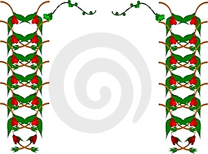 Mistletoe элементов граници Стоковые Фотографии RF - изображение: 9079118