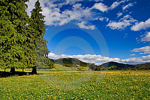Pure Sky, Pure Meadow Stock Photos - Image: 9082973