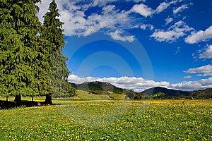 Pure Sky, Pure Meadow Stock Photos - Image: 9082973