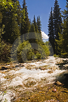 Rushing Mountain Stream Royalty Free Stock Photography - Image: 910217
