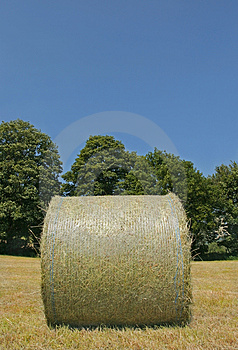 Wrapped Hay Bale Stock Images - Image: 912884