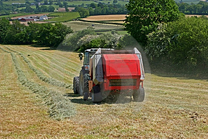 Gathering The Hay. Royalty Free Stock Photography - Image: 913447