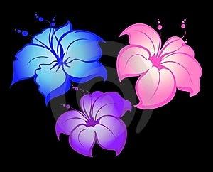 Floral Background Stock Image - Image: 9213081