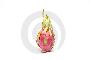 Red Pitaya (or Pitahaya) Stock Images - Image: 9217014