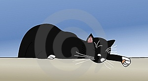 Sleeping Cat Royalty Free Stock Photo - Image: 9220865