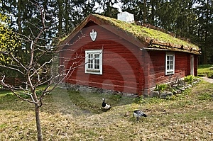 Scene From Old Swedish Life Royalty Free Stock Photography - Image: 9225977