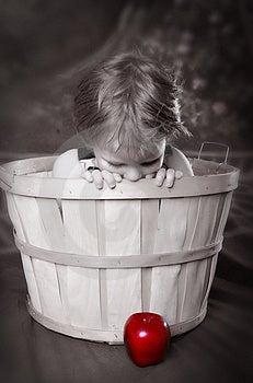 Apple Basket Stock Image - Image: 9247171