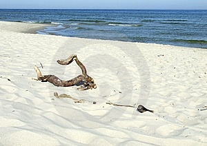 Beach And Sea Royalty Free Stock Images - Image: 9247399