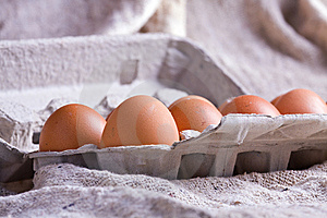 Eggs In Carton Stock Photography - Image: 9248262