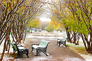 Park Bench Covered With Snow Royalty Free Stock Photos - Image: 9254608