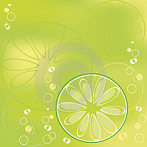 Lime Stock Photo - Image: 9255040