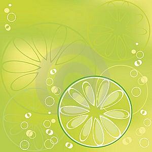 Lime Stock Photo - Image: 9255040