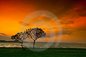 Sunset Royalty Free Stock Photo - Image: 9255615