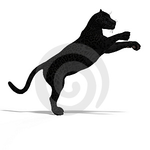Big Cat Black Jaguar Royalty Free Stock Photos - Image: 9256958