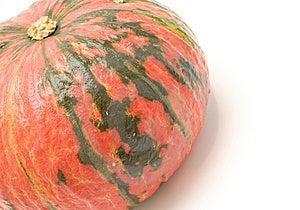 Pumpkin Stock Image - Image: 9261341