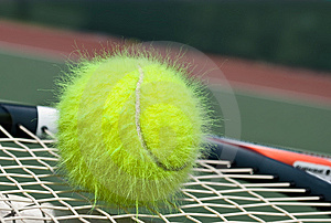 Shaggy Tennis Ball Stock Images - Image: 9285634