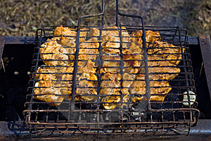 Sizzling Hot Meat Stock Photography - Image: 9288792