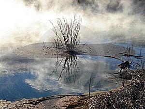 Geothermals, Kuirau Park, Rotorua, New Zealand Royalty Free Stock Photo - Image: 9296435