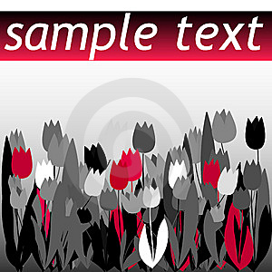 Tulip Flyer Stock Images - Image: 9305374