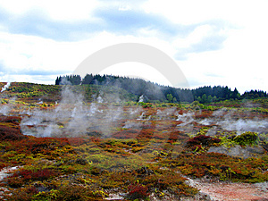 Geothermal Activity Of Hell's Gate, New Zealand Royalty Free Stock Photography - Image: 9305627