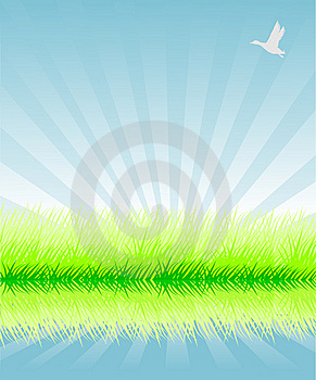 Green Grass Royalty Free Stock Photos - Image: 9320128