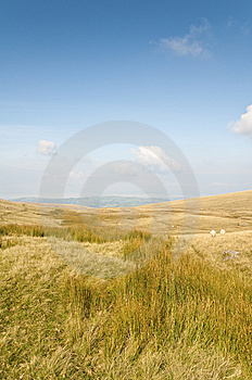 Brecon Beacons Royalty Free Stock Images - Image: 9334969