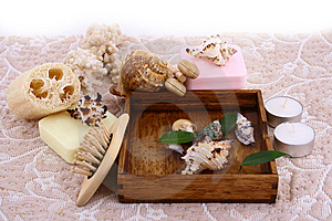 Spa Shell Royalty Free Stock Photography - Image: 9335437