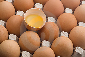 Raw Brown Eggs In An Egg Carton Stock Image - Image: 9343891