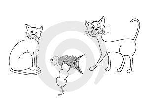 Three Cats Stock Photography - Image: 9371902