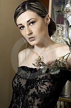 Beautiful Brunette Woman Stock Photos - Image: 9374653