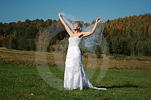 Bride With Bridal Veil Flying Walking In Grass Stock Photography - Image: 9380582