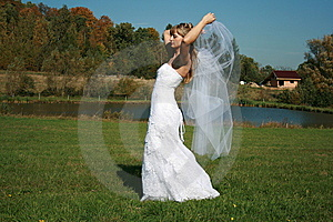 Bride With Bridal Veil Flying Walking On A Meadow Stock Photography - Image: 9380662