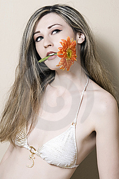 Woman Portrait With Flower Royalty Free Stock Photo - Image: 9387035