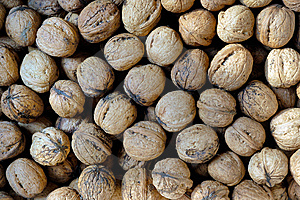 Walnut Texture Royalty Free Stock Images - Image: 9390679