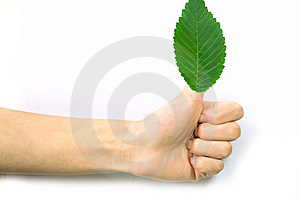 Gesturing Hand OK And Leaves Stock Images - Image: 9401134