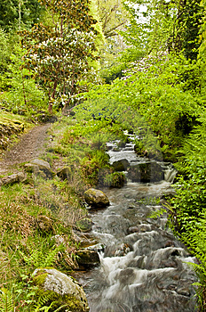 Stream With Path Royalty Free Stock Photos - Image: 9403468