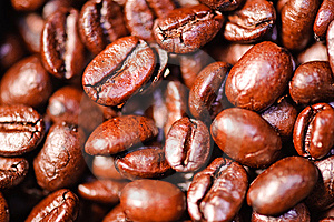 Crazy Coffee Bean Series 1 Stock Photography - Image: 9403502