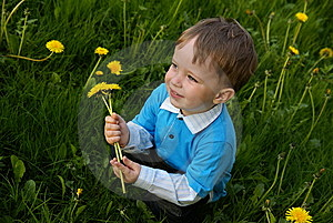 Boy With A Bunch Stock Photo - Image: 9405660