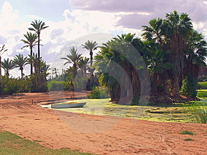 Desert Landscape Royalty Free Stock Photo - Image: 9408755