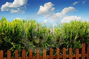 Clouds, Fence And Blue Sky Royalty Free Stock Photo - Image: 9412895