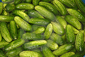 Green Cucmbers Royalty Free Stock Photos - Image: 9425838