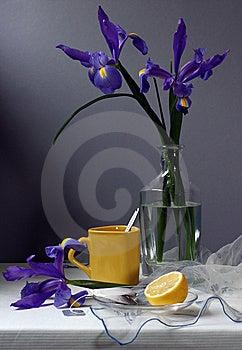 Iris Royalty Free Stock Image - Image: 9426846