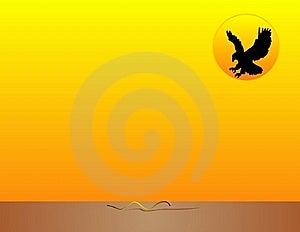 Sunset Predator... Stock Photography - Image: 9431962