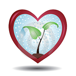 Plant In A Protective Love Shaped Glass Royalty Free Stock Photos - Image: 9438118