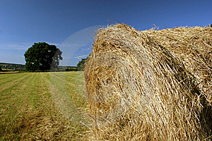 Idyllic Field With Hay Bales In Late Summer Stock Images - Image: 9446984