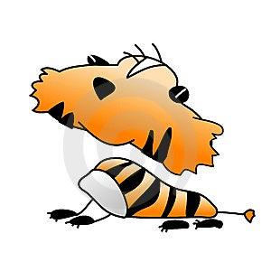 Tiger Stock Photo - Image: 9465480