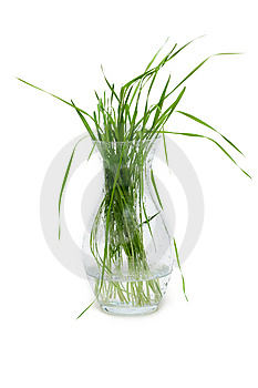 Bunch Of The Green Herb Royalty Free Stock Photo - Image: 9472385